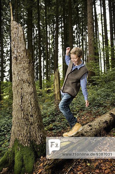 Junge - Person Baum balancieren Wald Baumstamm Stamm
