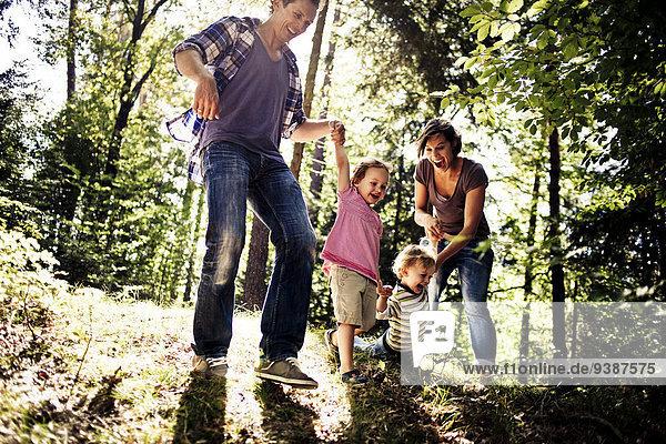 Fröhlichkeit Wald 2 spielen