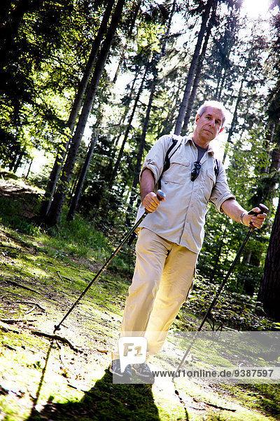 Senior Senioren Mann gehen Wald Norden
