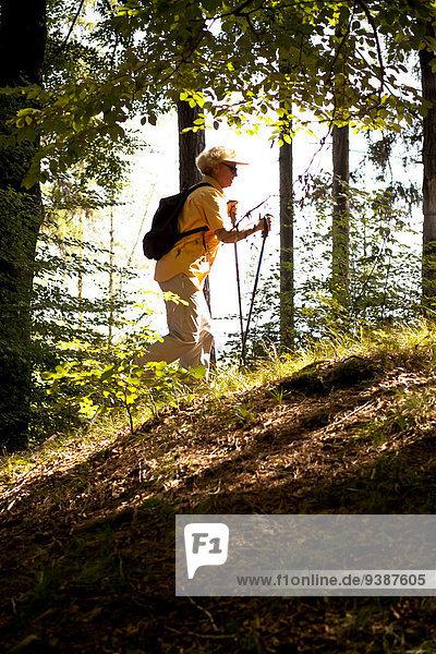 Senior Senioren Frau gehen Wald Norden