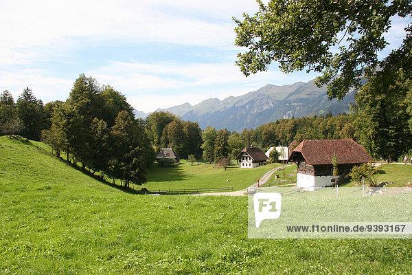 Landschaftlich schön landschaftlich reizvoll Wohnhaus Geschichte Museum Wiese Berner Oberland Bauernhofmuseum Schweiz