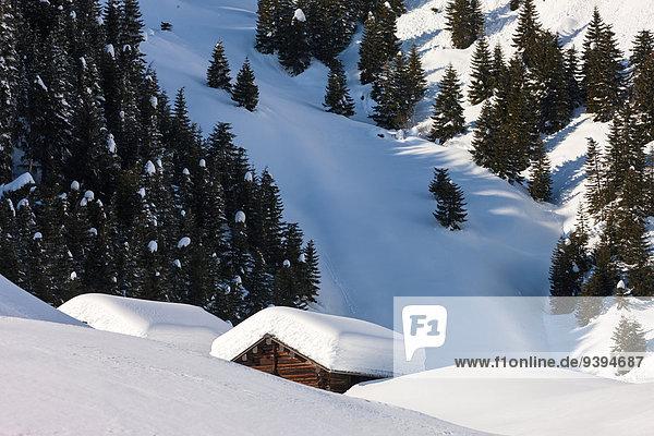 Europa Winter Wohnhaus Wald Holz Kanton Graubünden Schnee Schweiz