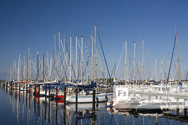 Außenaufnahme Hafen Spiegelung Boot Meer Jachthafen Holzsteg Ostsee Baltisches Meer Deutschland Reflections Schleswig-Holstein Tourismus