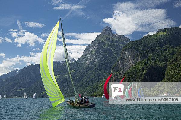 Segeln Europa Wassersport Tretboot Yacht Regatta Schweiz Vierwaldstättersee
