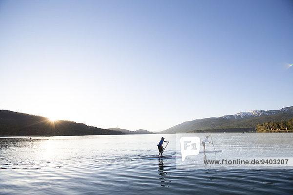 hoch oben einsteigen Sonnenuntergang Sport See Paddel Weißfisch