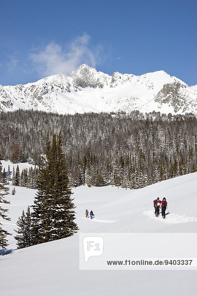 nahe 4 Himmel groß großes großer große großen unbewohnte entlegene Gegend Ski Bienenstock