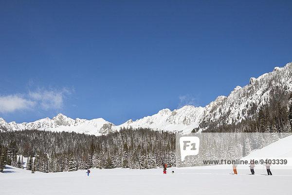 nahe 5 Himmel groß großes großer große großen unbewohnte entlegene Gegend Ski Bienenstock
