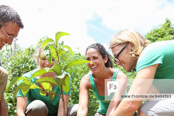 Lächelnde Menschen pflanzen Baum im sonnigen Garten