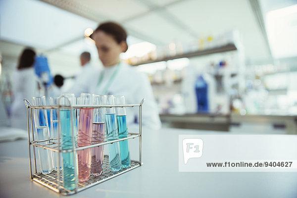 Nahaufnahme von Reagenzgläsern im Rack im Labor