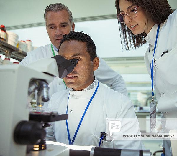 Wissenschaftler untersuchen Probe unter dem Mikroskop im Labor