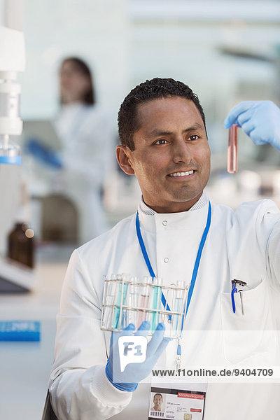 Wissenschaftler untersucht Probe im Reagenzglas im Labor