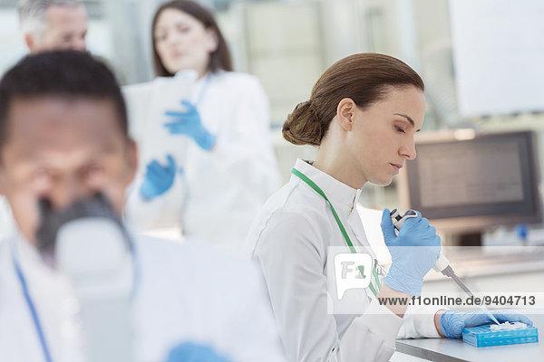 Wissenschaftler pipettieren die Probe im Labor in den Löffel