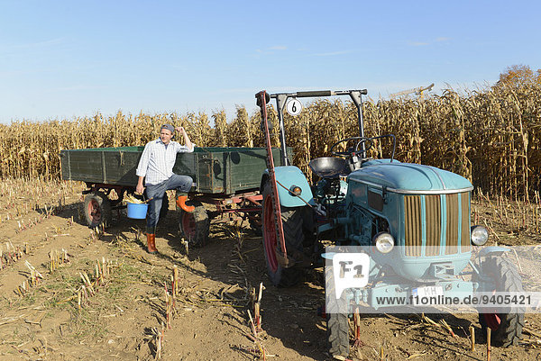Kornfeld Traktor Bauer
