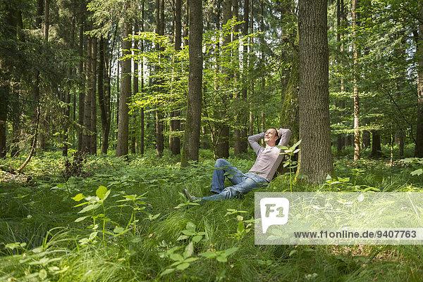angelehnt Mann lächeln Baum Wald reifer Erwachsene reife Erwachsene