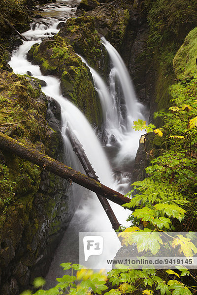 Wasserfall Sol Duc Falls im Sol Duc River Valley  Sol Duc Valley  Washington  USA