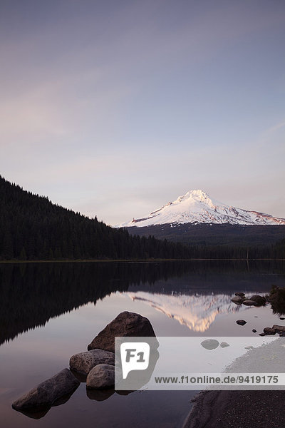 Trillium Lake mit Mount Hood  Clackamas County  Oregon  USA