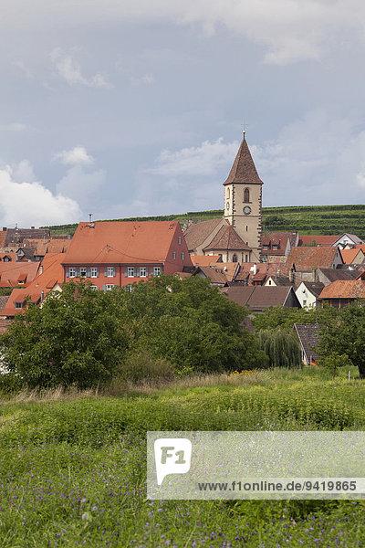 Ortsansicht  Vogtsburg-Burkheim  Baden-Württemberg  Deutschland