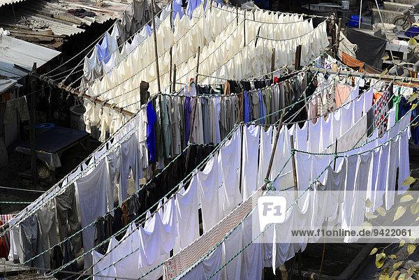 Wäsche beim Trocknen  Mahalaxmi Dhobi Ghat  Waschviertel  Mumbai  Maharashtra  Indien
