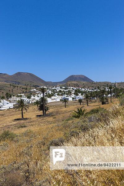 Das Bergdorf Haría mit seinen weißen Häusern  hinten der Vulkan Monte Corona  Maguez  Lanzarote  Kanarische Inseln  Spanien