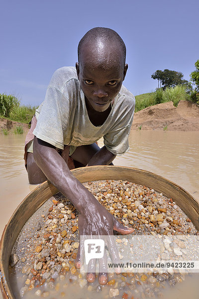 Diamond hunter searching for diamonds with a sieve  near Koidu  Koidu-Sefadu  Kono District  Eastern Province  Sierra Leone