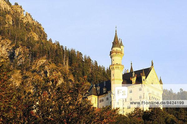 Schloss Neuschwanstein im Abendlicht  Schwangau  Bayern  Deutschland