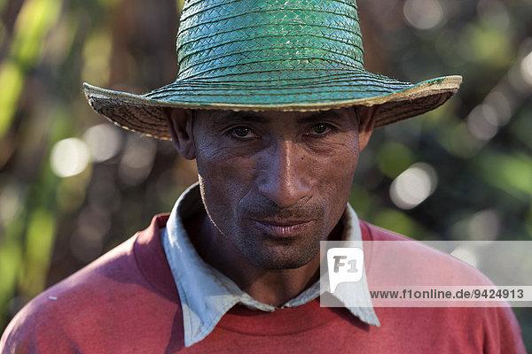 Arbeiter auf einem Zuckerrohrfeld,  Portrait,  bei Cienfuegos,  Kuba