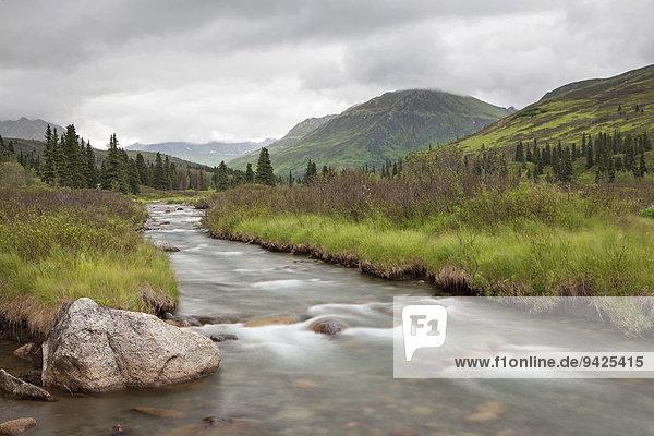 Fluss in den Talkeetna Mountains  Palmer  Alaska  USA