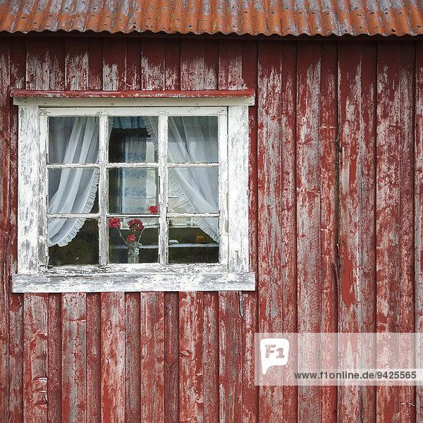 Alter Rorbu oder Fischerhütte  Moskenesøya  Lofoten  Norwegen