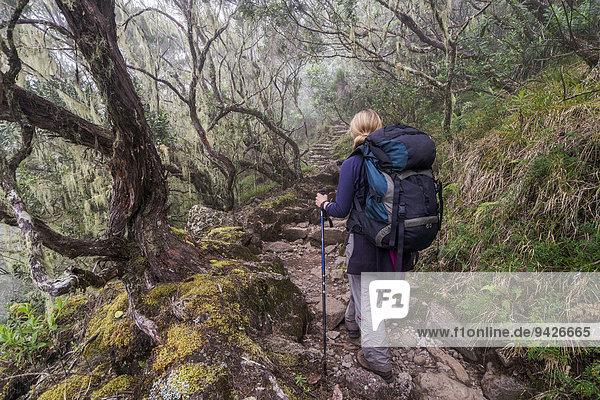 Junge Frau beim Aufstieg durch Nebelwald zum Piton des Neiges  Talkessel Cilaos  Cirque de Cilaos  La Reunion