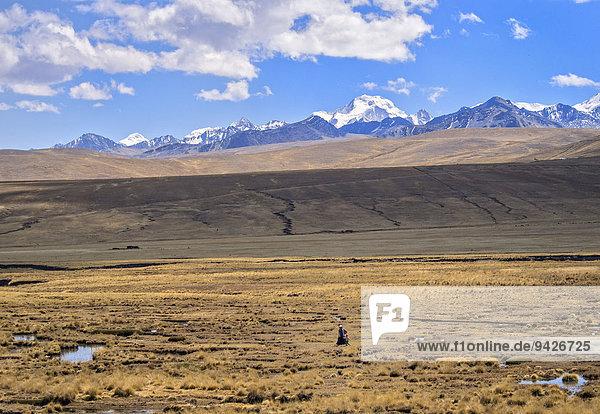 Frau allein zu Fuß in der Hochebene  hinten Gebirge Cordillera Real  bolivianische Hochebene Altiplano  Bolivien