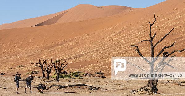 Drei Touristen fotografieren abgestorbenen Baum in der Salz-Ton Pfanne  Deadvlei  Sossusvlei  Namib-Wüste  Namibia