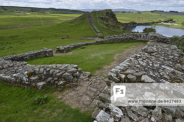Walltown Crags  Hadrian's Wall  Northumberland  England  Vereinigtes Königreich