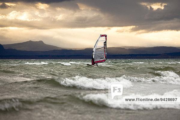 Surfer am Bodensee bei starkem Wind von der Insel Reichenau aus gesehen  Baden-Württemberg  Deutschland  Europa
