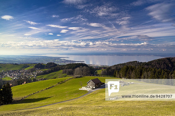 Spring landscape on Mt. Gupf with a view to Lake Constance  Rorschacherberg  Lake Constance  Switzerland  Europe
