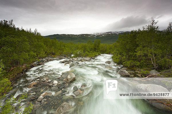 Fluss am Kungsleden oder Königsweg  Provinz Lappland  Schweden  Europa