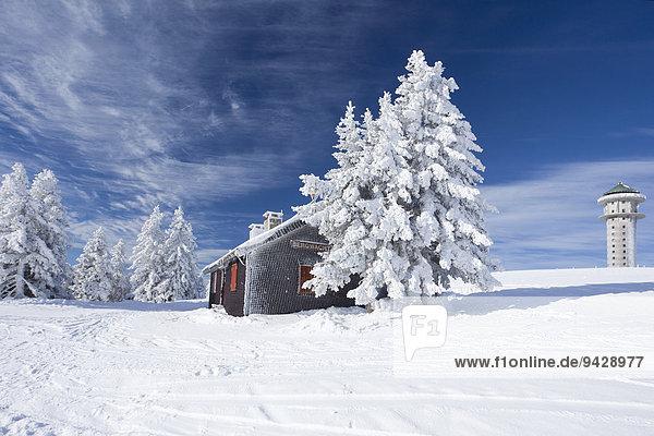 Winter auf dem frisch verschneiten Feldberg mit Berghütte und Seebuckturm im Schwarzwald  Baden-Württemberg  Deutschland  Europa