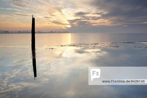 Blick am Abend auf die Insel Reichenau über einen zugefroren Bodensee  Baden-Württemberg  Deutschland  Europa
