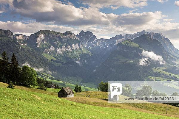 Blick zum Alpstein von der Fähnerenspitze an einem Sommerabend  Appenzell  Schweiz  Europa