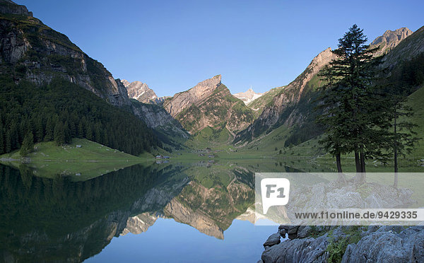 Morgenstimmung am Seealpsee mit Blick zum Säntis und den Alpstein  Schweiz  Europa