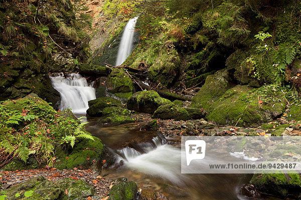 Wasserfall in der Ravennaschlucht im Höllental bei Freiburg im Schwarzwald  Baden-Württemberg  Deutschland  Europa
