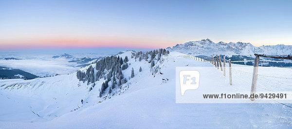 Panoramablick auf den Alpstein und das winterliche Appenzellerland kurz nach Sonnenuntergang  Schweizer Alpen  Schweiz  Europa  ÖffentlicherGrund