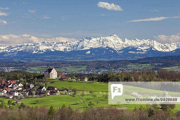 Alpensicht im April mit Säntis  Alpstein und dem Schloss in Freudental  Bodenseeregion  Baden-Württemberg  Deutschland  Europa  ÖffentlicherGrund