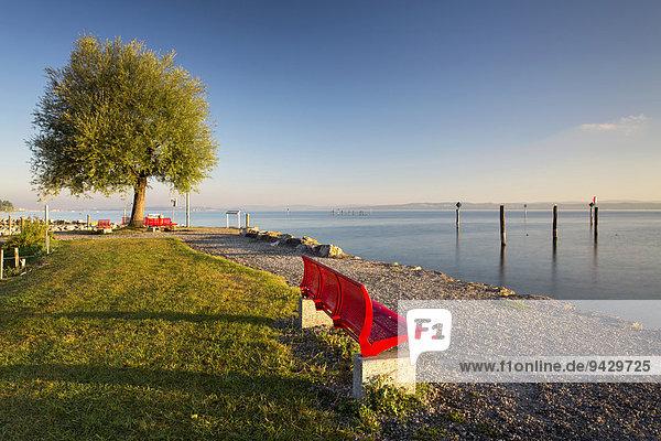 Morgenstimmung im Hafen von Güttingen am Schweizer Bodenseeufer  Schweiz  Europa  ÖffentlicherGrund