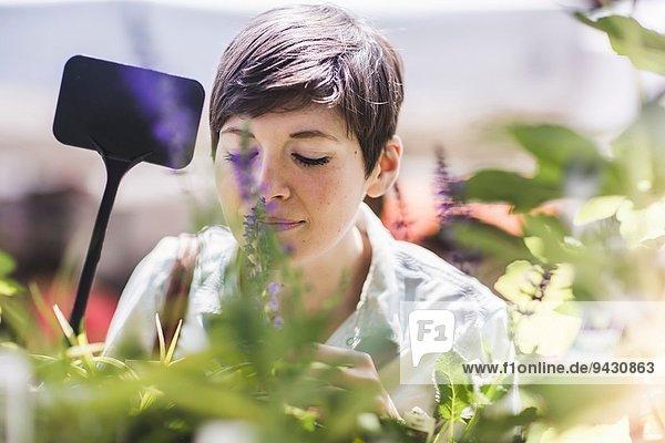 Frau beim Einkaufen auf dem Pflanzenmarkt Frau beim Einkaufen auf dem Pflanzenmarkt