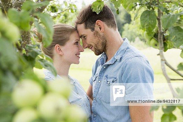 Mittleres erwachsenes Paar von Angesicht zu Angesicht