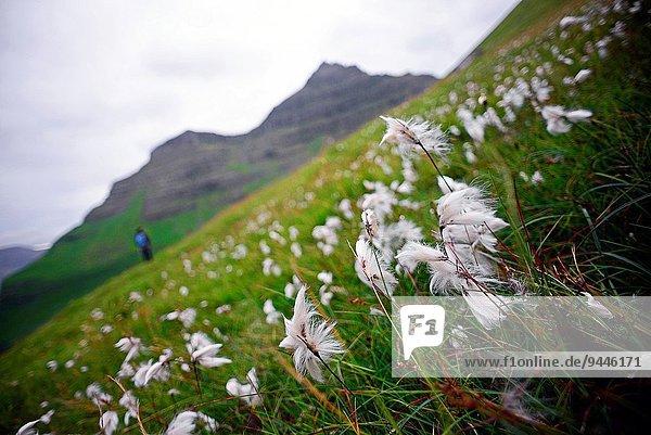 Frau Aktion wandern jung Färöer-Inseln Kalsoy