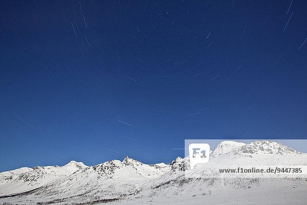 Sterne am Kattfjordeidet  Tromsø  Troms  Norwegen  Europa
