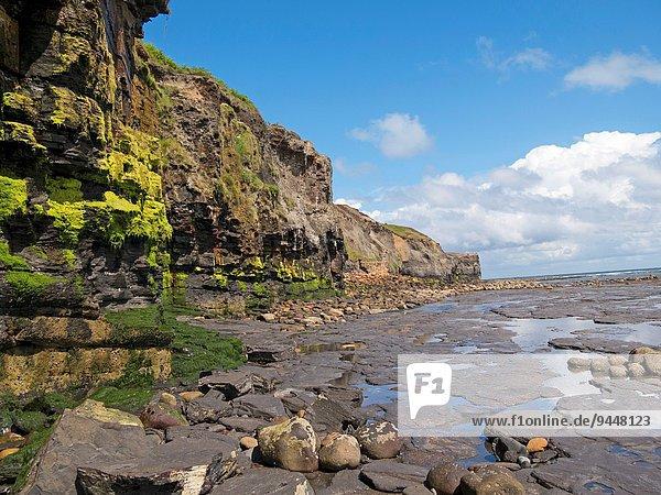 Strand Großbritannien Steilküste North Yorkshire