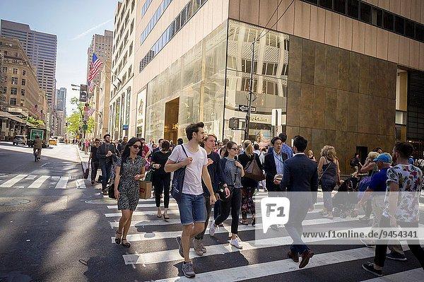überqueren, Straße, beschäftigt, Fußgänger, Allee, Kreuz, neu