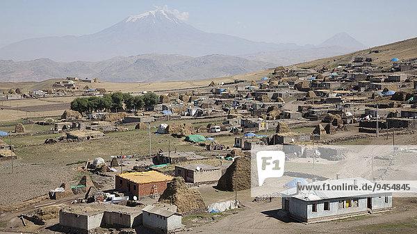 Village on Mount Ararat  Agri Dagi  Eastern Anatolia Region  Turkey  Asia